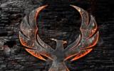 Phoenix Kodi