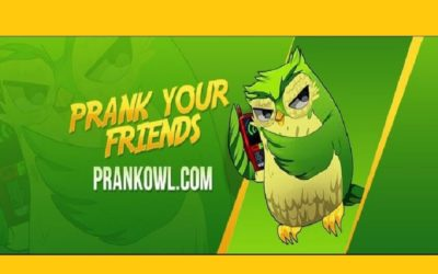 Prank Owl